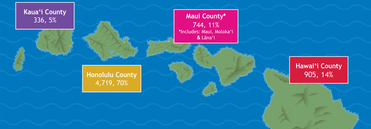 Cancer Cases Map for the state of Hawaiʻi